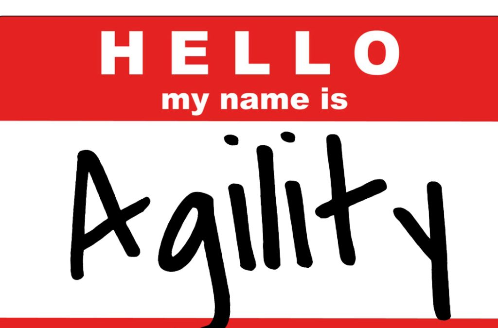 What are the implications of agility in strategy process?